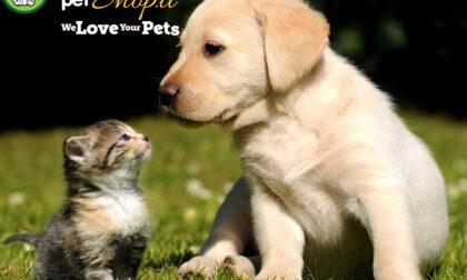 Robinson Pet Shop, il negozio online per gli amanti degli animali domestici